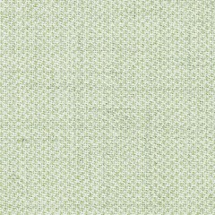green clara fabric swatch